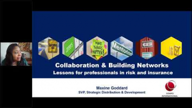 Embedded thumbnail for Collaboration & Building Networks